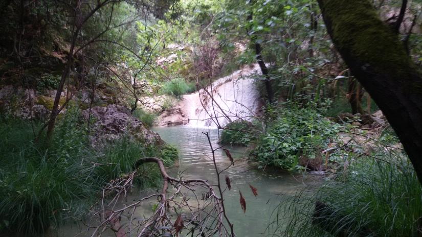 Flusslandschaft_tserkesi